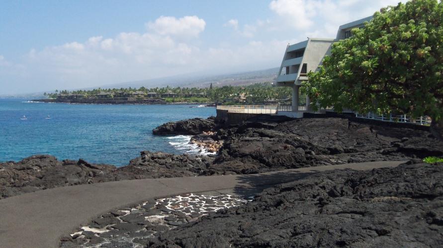 Kona Hotel Grounds - North Side Lava